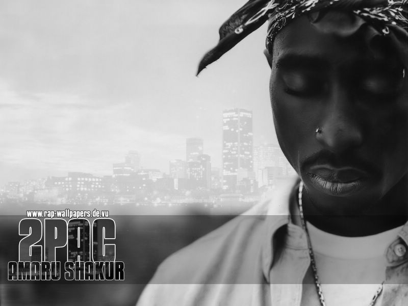 the reasons for 2pacs success in rap music The most popular bodybuilding message boards most plausible theory on 2pacs and biggies death but none of the reasons.